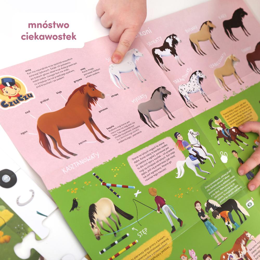 ciekawostki o koniach maści koni
