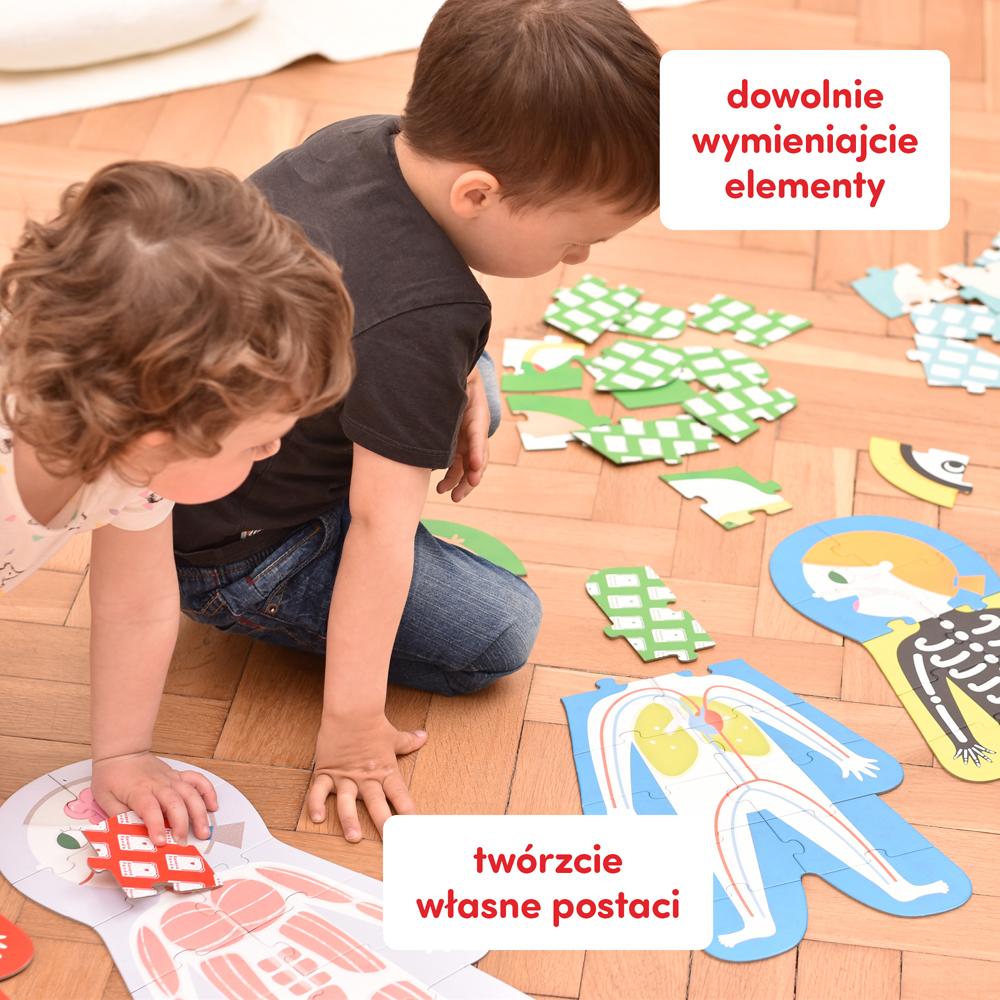 jak jest zbudowane ludzkie ciało przedszkole
