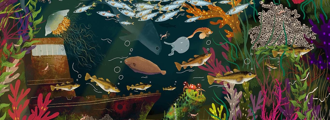 pod wodą Bałtyku